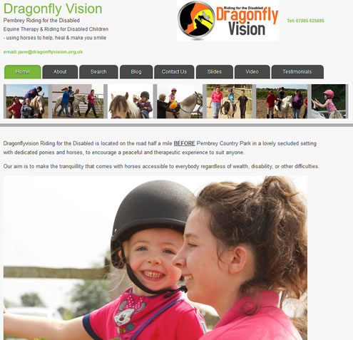 Dragonfly Vision website